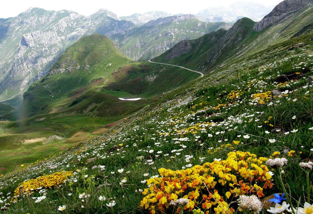 Lungo la Via del Sale, da Limone al mare - Perle Alpine