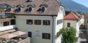 Hotel Greif***