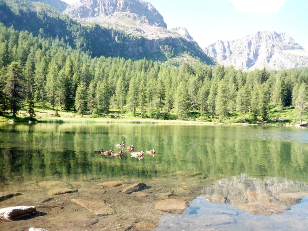 Lago San Pellegrino, Moena