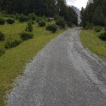 Strada bianca Stelvio