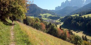 Südtirol Transfer, il modo più green per visitare le Perle delle Alpi