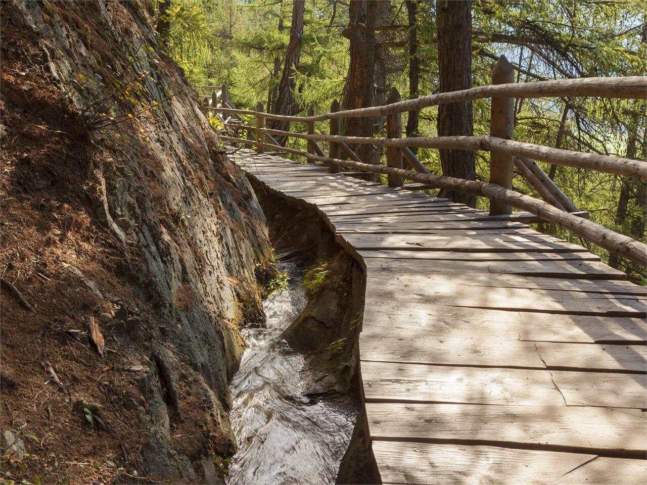 Uno dei sentieri delle Rogge, vicino alla Perla Alpina di Malles