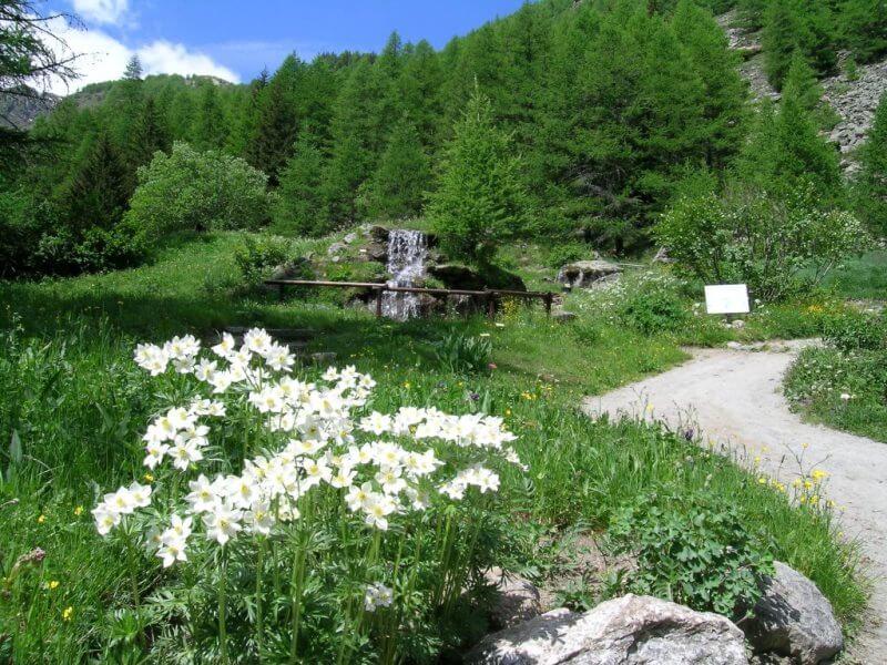 Giardino-Botanico-Paradisia-cascata (c) grand-paradis.it